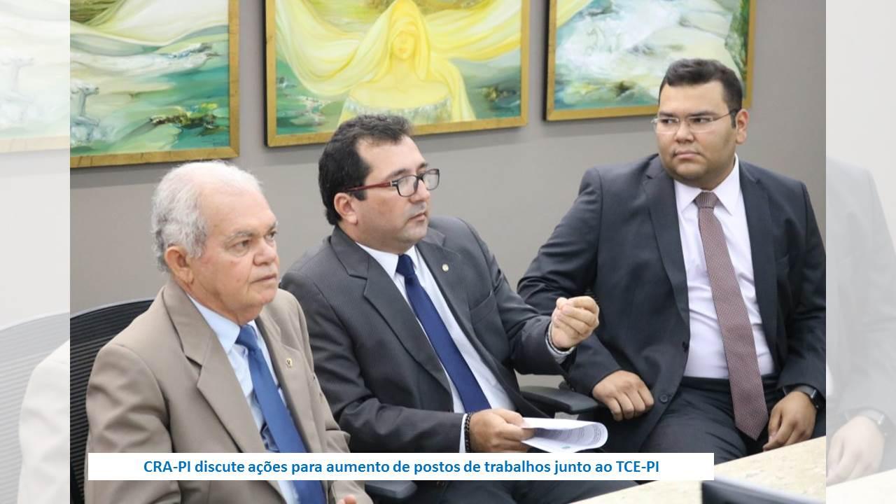 CRA-PI discute ações para aumento de postos de trabalhos junto ao TCE-PI