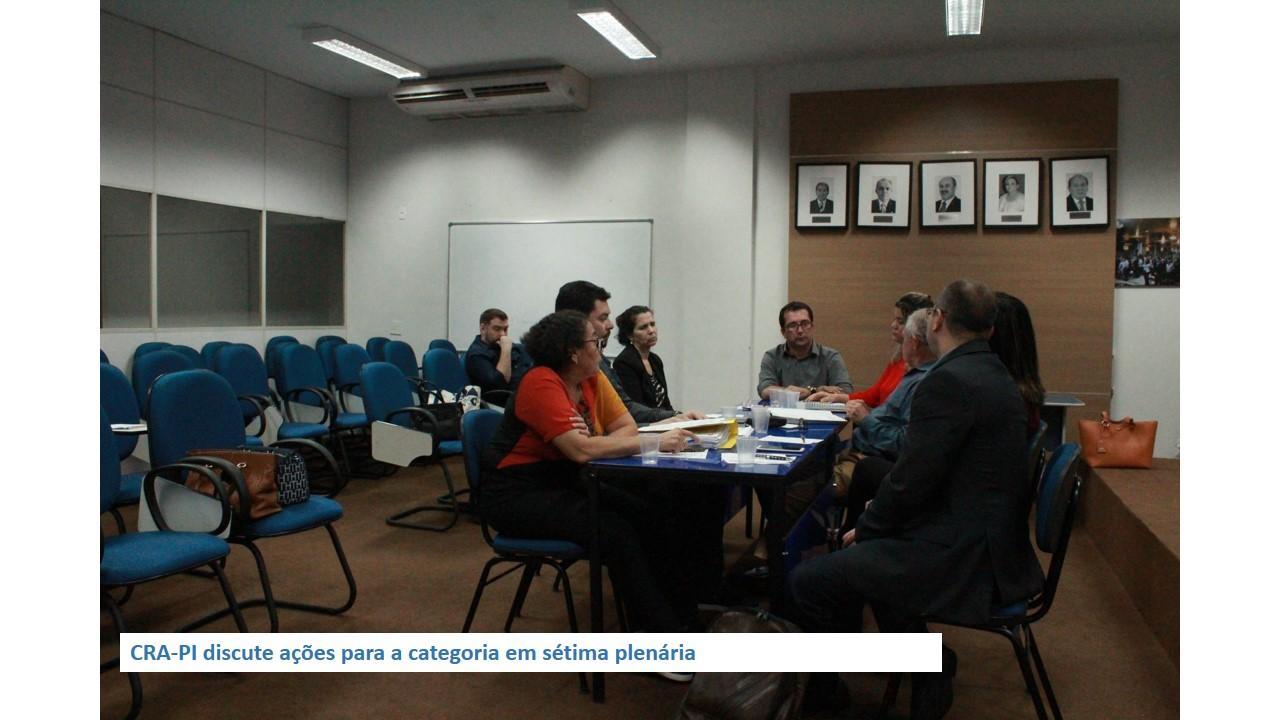 CRA-PI discute ações para a categoria em sétima plenária