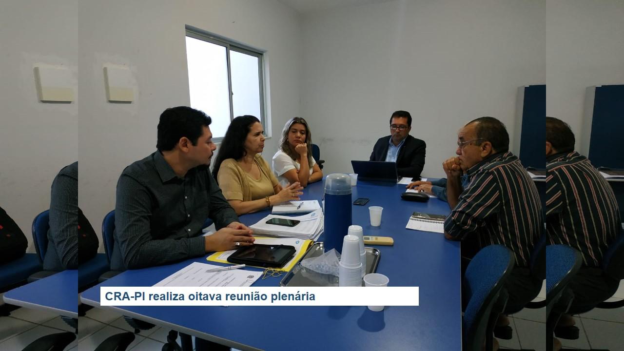 CRA-PI realiza oitava reunião plenária